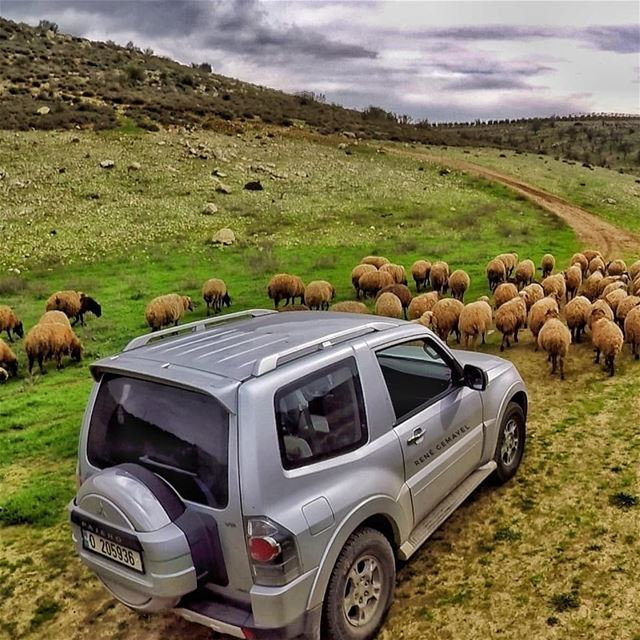 Real fun begins when paved road ends.... LebanonTimes  ig_lebanon ...