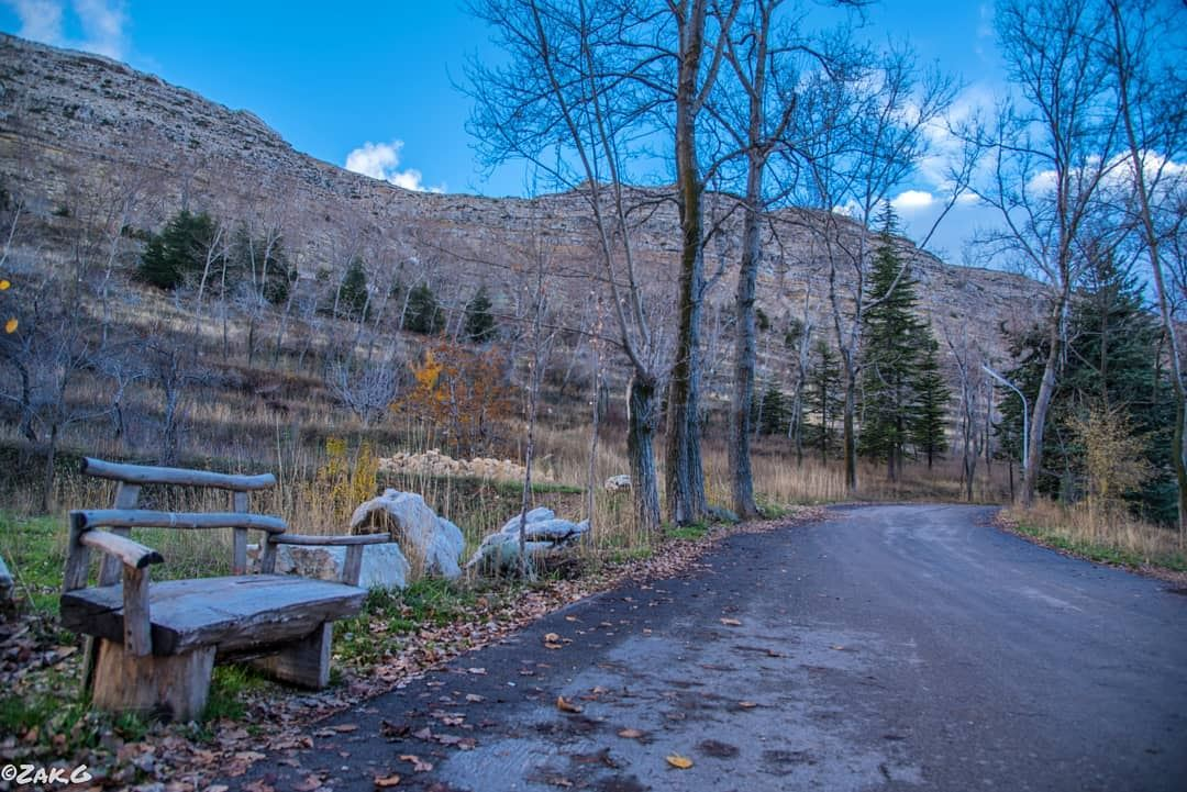 If that wooden bench could talk, what story do you think it'll tell u?... (El Laqloûq, Mont-Liban, Lebanon)