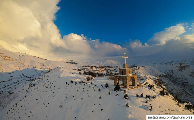 After the storm everything looks spectacular.This picture was taken last... (The Cedars of Lebanon)