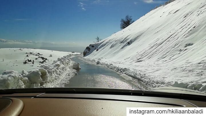 Private tour, snowshooing Cedar Reserve - Chouf... privatetour ...