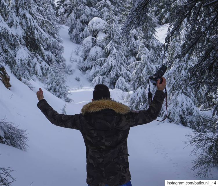 Go where you feel most alive ❄️ ───────────────── chouf  shoufreserve ...