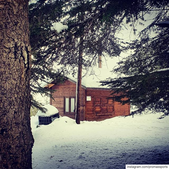 Little home away from home🍃💕.🌲🌲🌲🌲🌲🌲🌲🌲🌲🌲🌲🌲🌲🌲.... (Hadath El-Jubbah, Liban-Nord, Lebanon)