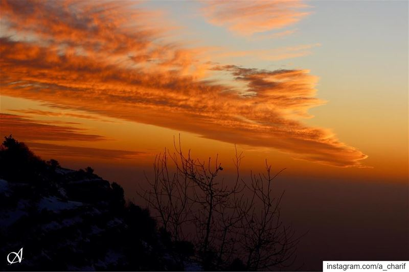 The magical colors of sunset sunset  clouds  sky  colors  tree  outdoors... (Jezzîne, Al Janub, Lebanon)