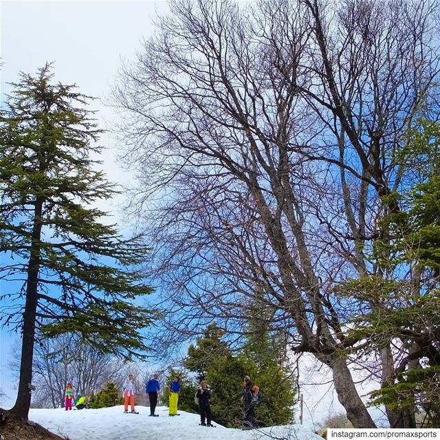 Join ProMax this Sun, Jan 20 to Ehden Reserve Snowshoeing. Reservations 👉... (Horsh Ehden)