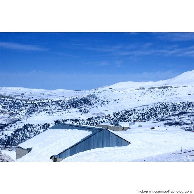 P.E.A.C.E ☀️❄️  lebanon  zaarour  beauty  snow  landscape  beautiful ... (Zaarour)