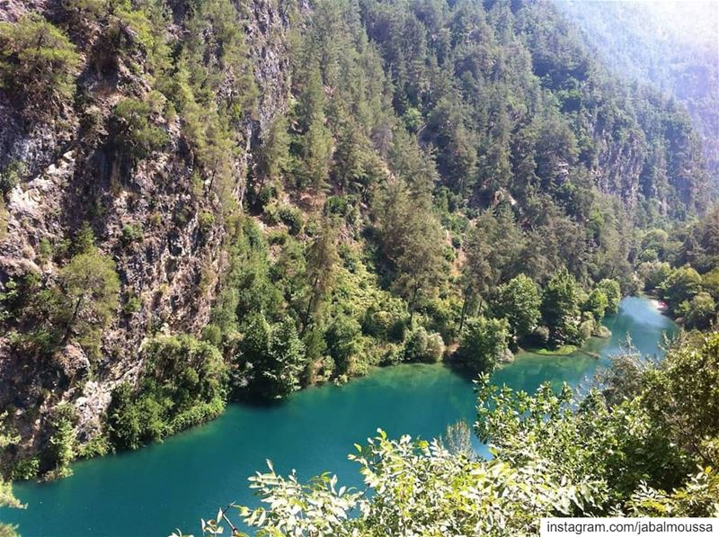 A perfect view of Adonis River. JabalMoussa (Due to the maintenance of... (Jabal Moussa Biosphere Reserve)