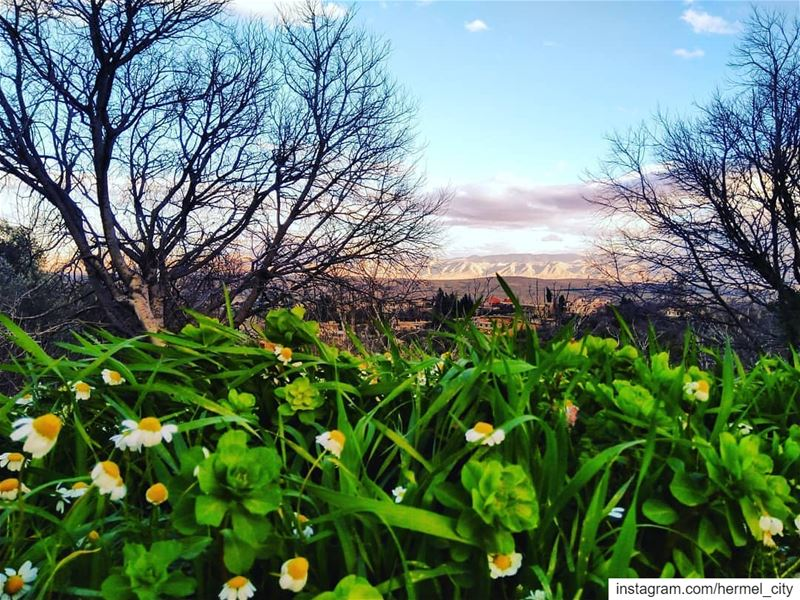 A mix of  spring &  Winter by @firassafwan hermel  hermel_city  bekaa ...