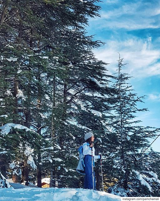 Aim high ⬆️📸 @jdched. whitedays ❄  tb🔙.. breaktheroutine ... (Hadath El-Jubbah, Liban-Nord, Lebanon)