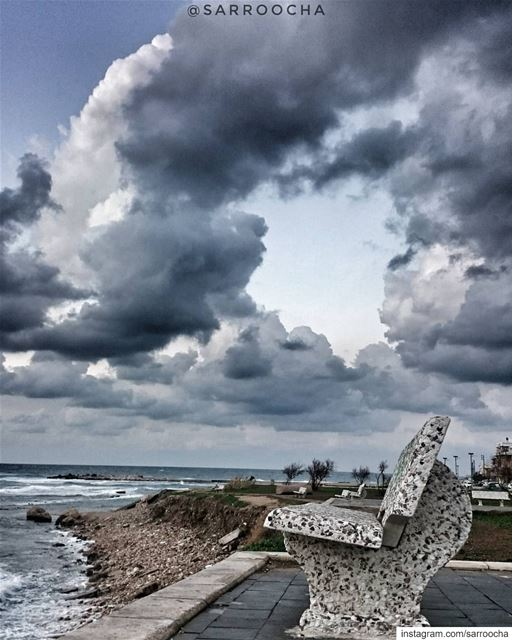 One must maintain a little bittle of summer, even in the middle of winter ☔ (Tyre, Lebanon)