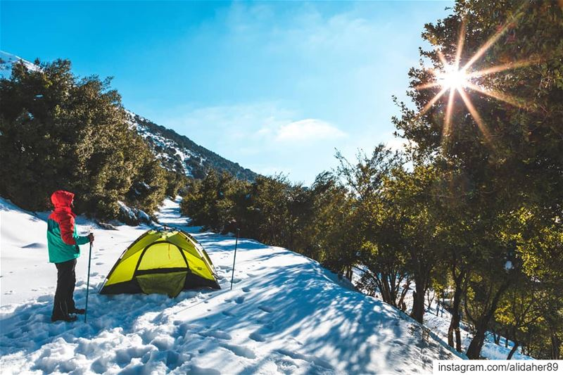 Nature is not a place to visit. it's home ⛺❄.......... (Chouf)