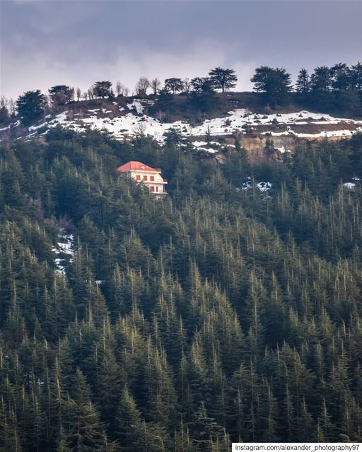 Lost in the woods 🌲🏠 - Would you like to live in this amazing place?... (Hadath El-Jubbah, Liban-Nord, Lebanon)