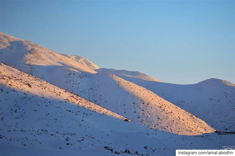 أخر خيوطها........ lebanon  photography  photographylovers ... (Hasbaya District)