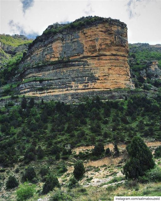 Green is the prime color of the world, and that from which its loveliness... (Afka, Mont-Liban, Lebanon)