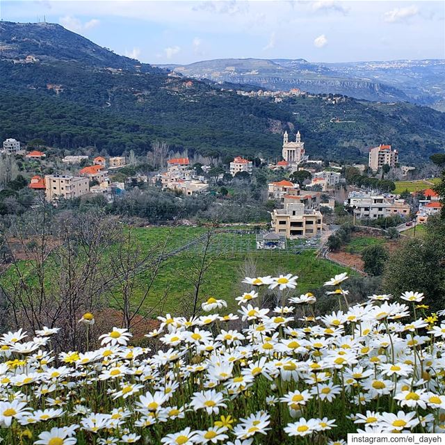 Spring a lovely reminder of how beautiful change can truly be.❤... (Jezzîne, Al Janub, Lebanon)