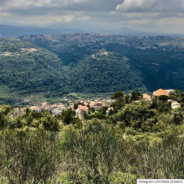 Feasting on natural beauty.  livelovechouf ... (Chouf)