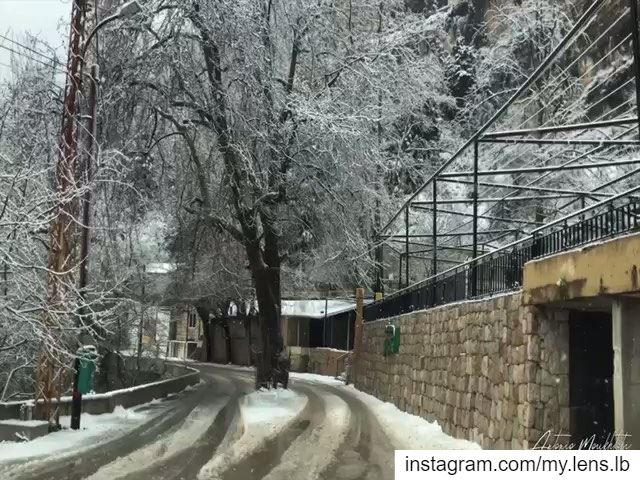 """No winter lasts forever, no spring skips its turn.""--Hal Borland ehden ... (Ehden, Lebanon)"