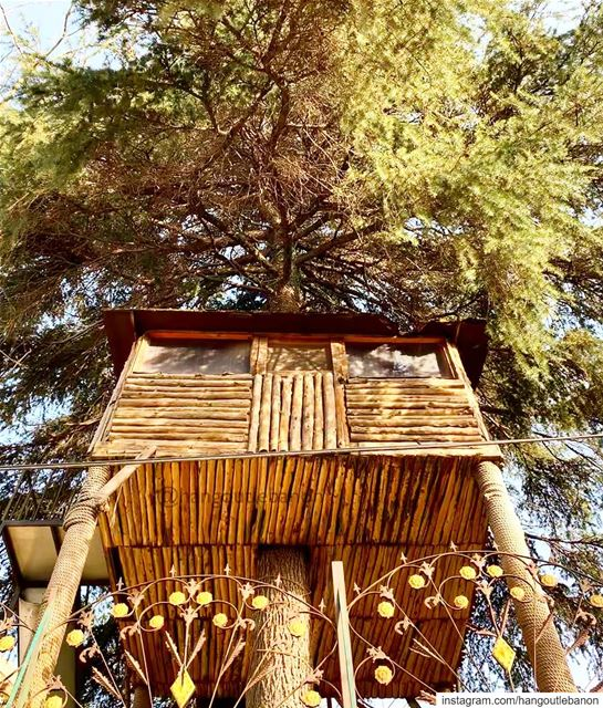 Let's have a power nap.   عرزال - hangoutlebanon  lebanonpocketguide ... (Sawfar, Mont-Liban, Lebanon)