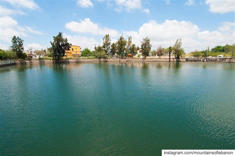 Just a lake/pond in the middle of town! (Yiii comme à Zaghrour)😏... (Shaqra, Al Janub, Lebanon)