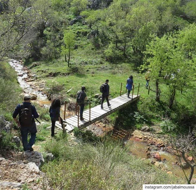 Qornet el Deir trail is a path not to be missed (Suitable for families). ... (Jabal Moussa Biosphere Reserve)