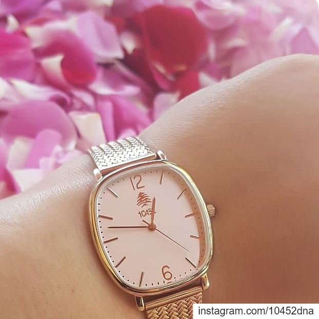 loveisintheair  springtime  roses  10452dna  watch  melrose  lebanon ... (Mansourieh El Matn المنصورية - المتن)