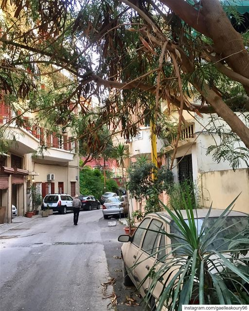 An early morning walk is a blessing for the whole day 🚶🏻‍♂️❤️  newday ... (Achrafieh, Lebanon)