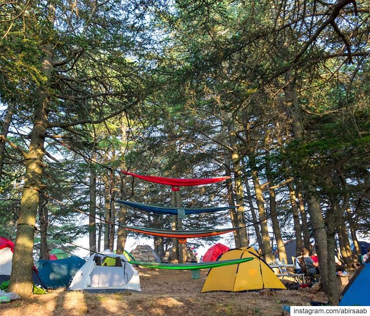 Weekend Goals be like.. ... lebanon  camping  campinglife ... (Hadath Al Jubbah, Liban-Nord, Lebanon)