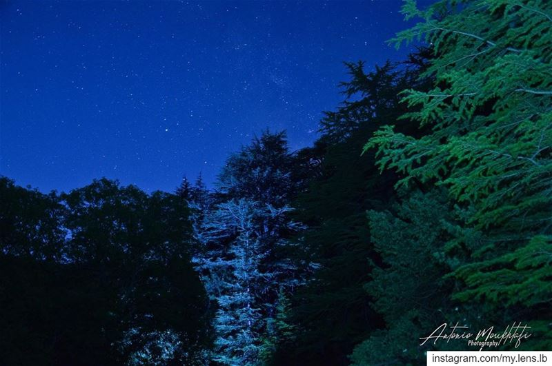 Stars can't shine without darkness. night  stars  reservehorshehden ... (Ehden, Lebanon)