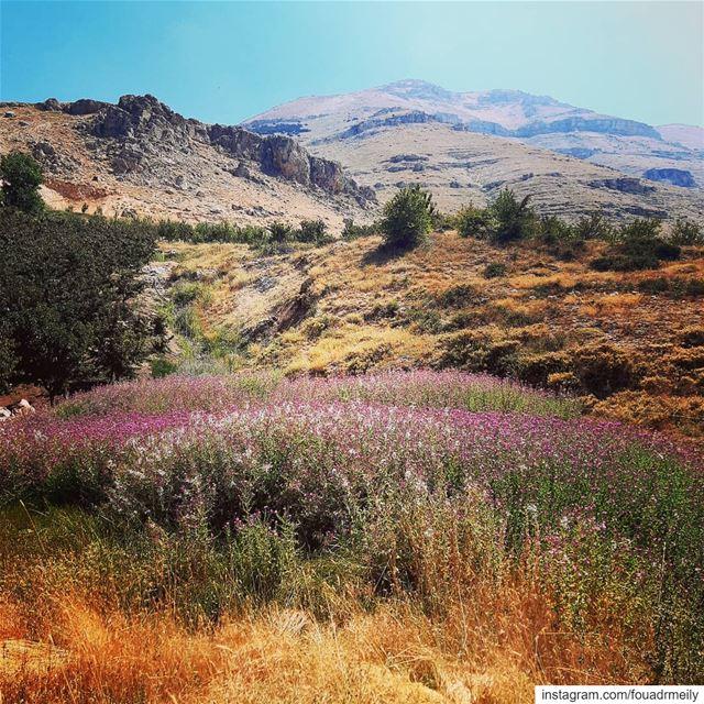 hikingadventures  hikers  lebanon  hikinglb  hikes  adventure nature ... (Lebanon)