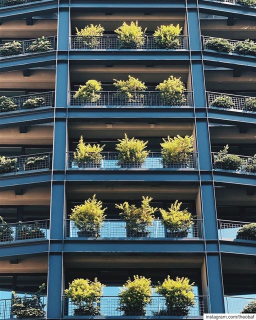 Vertical gardens ........ lebanon  architecture ... (Clemenceau zone)