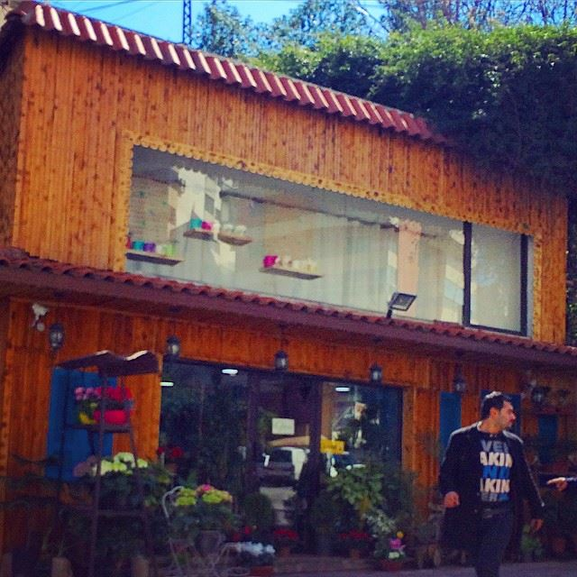 A flower shop in jounieh.  photography  outdoorphotography  flowers  shop ...