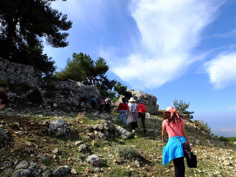 northlebanon  hikes  green  travel  trees  nature  culture  hiking ...