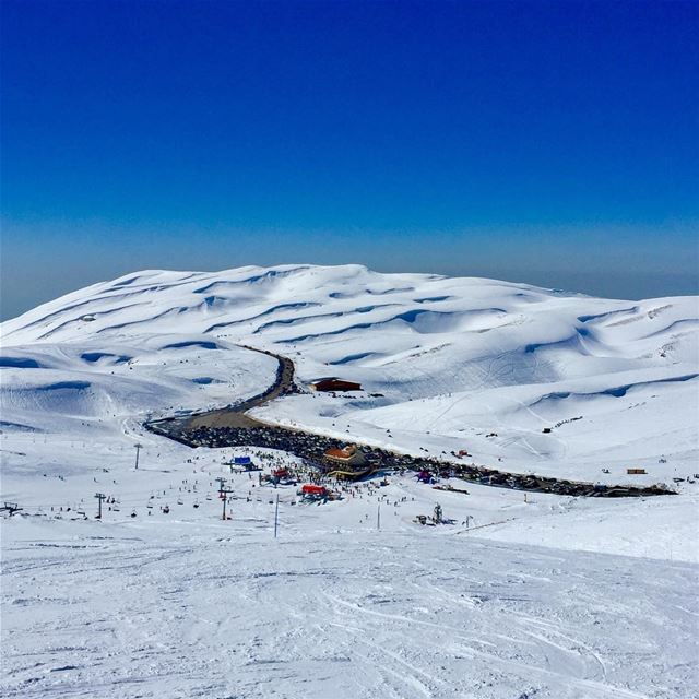 Cabane's perfect day 😎 perfectday  ski  kfardebian  nature  snow ... (Faraya Wardeh)