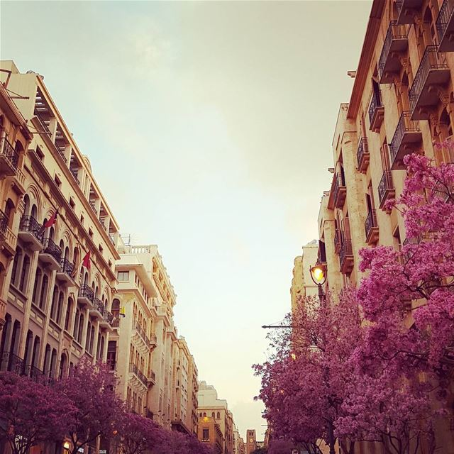 Happiness is not something readymade.  It comes from your own actions. –Dal (Downtown Beirut)