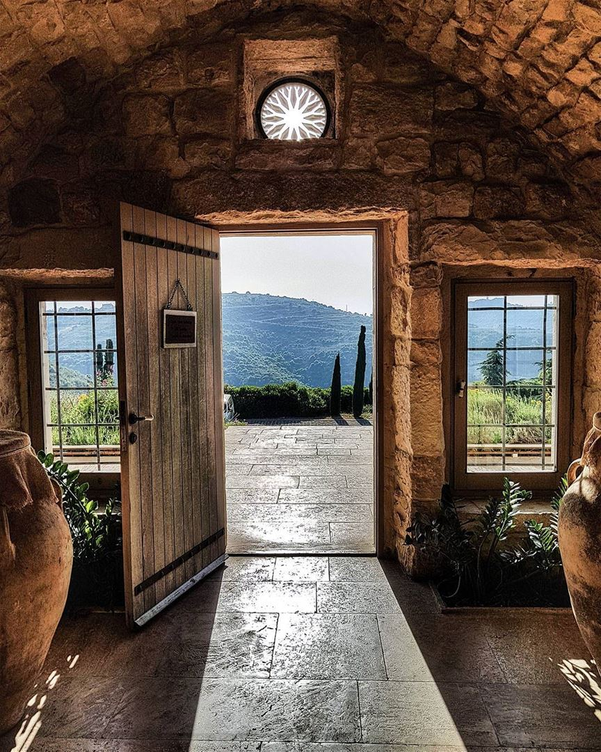 Step Into The Light And Let It Go: Step Into The Light Light Ixir Iloveixir Ixirwinery Wine
