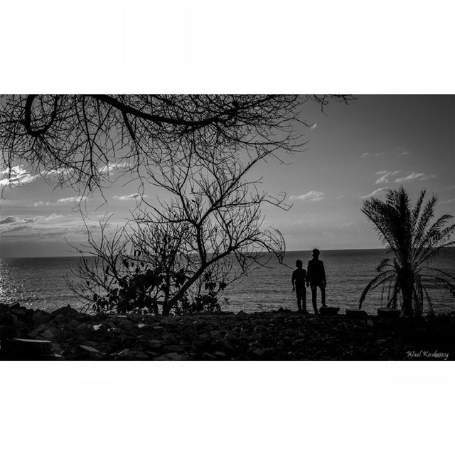 bnw  boys  sea  shore  blackandwhite  trees  silhouette  photography ...