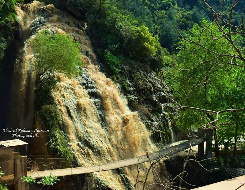 Ouyoun El Samak 💚 LiveLoveMinieh  LiveLoveWaterfalls  Waterfall  ... (Ouyoun El Samak Waterfalls)