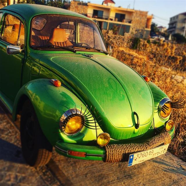 instame instamood cars collection wolkswagen  green  old cool dayout... (أهدن  لبنان)