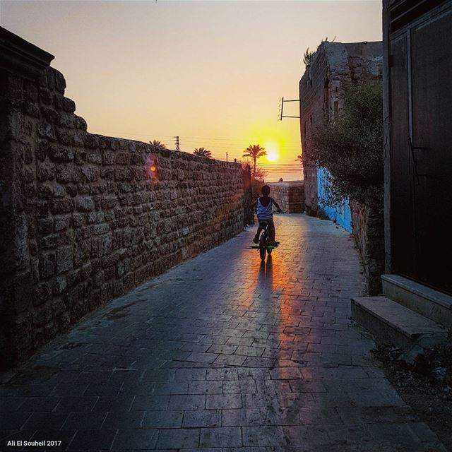 tb  sunset  sour  southlebanon  bike  kids  fun  old  city  shadow  palm ... (Soûr, Al Janub, Lebanon)