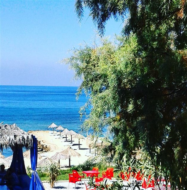 A day to relax.... 🌴❤🌴 relax  beach  beautifullebanon  ocean  lebanon ...