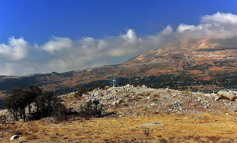 There is a voice that doesn't use words,LISTEN...  listen  look  lookdeep ... (Mount Lebanon)