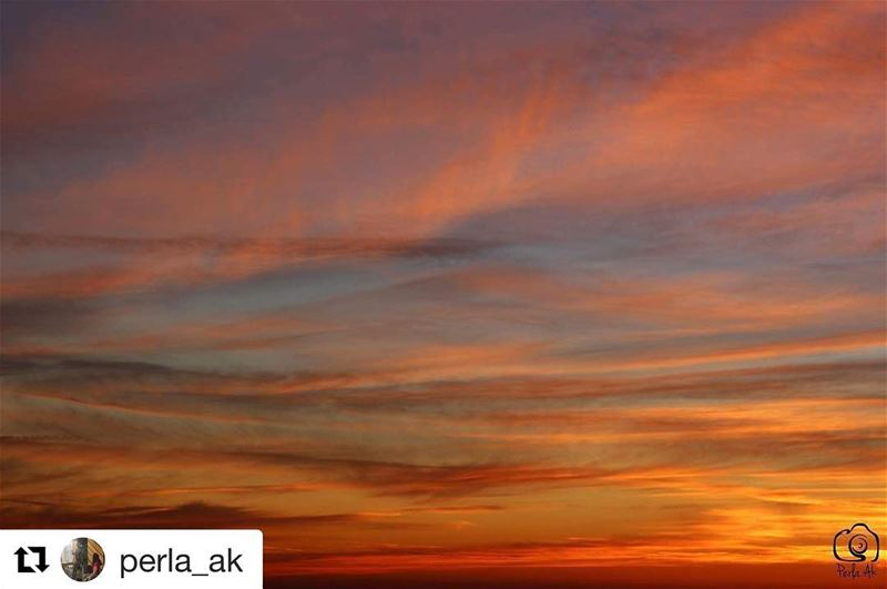 onlyfiliban  Repost @perla_ak (@get_repost)・・・Thank youوأطفأت في البحار... (Mount Lebanon Governorate)