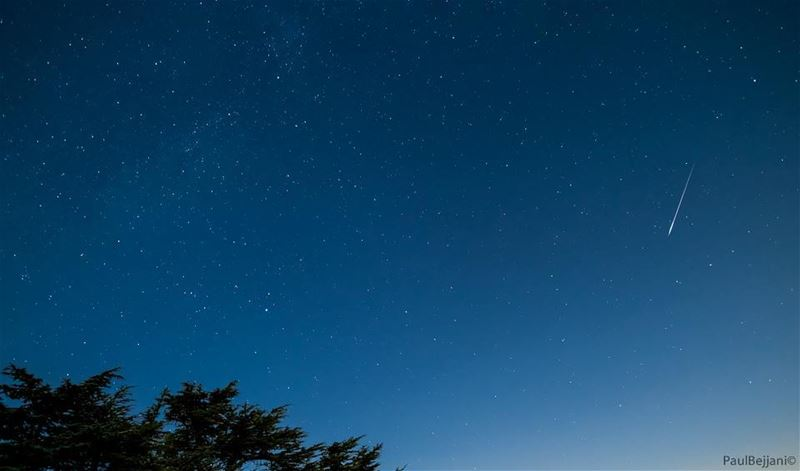perseids  meteor  meteorshower  tannourine  august  stars  shining ... (Tannourine Cedars Nature Reserve)