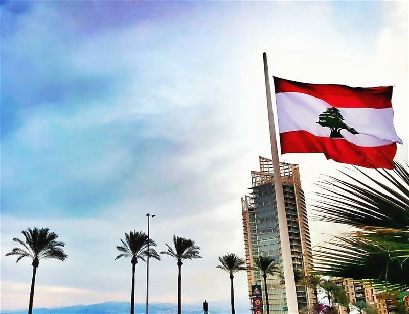 🔴🔴⚪🌲⚪🔴🔴Happy Independence Day 👨‍✈️.... Lebanon  Independence ...