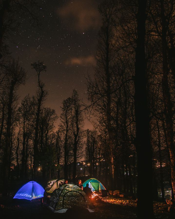 Even The Withered Forest At Night Seems Alive Camping Aakar Liban Nord Lebanon