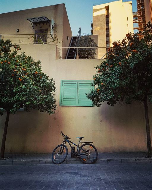 "When Monday says ""Hello"" again.. Be grateful...🍊🍃🚴🍃🍊 happymonday... (Beirut, Lebanon)"