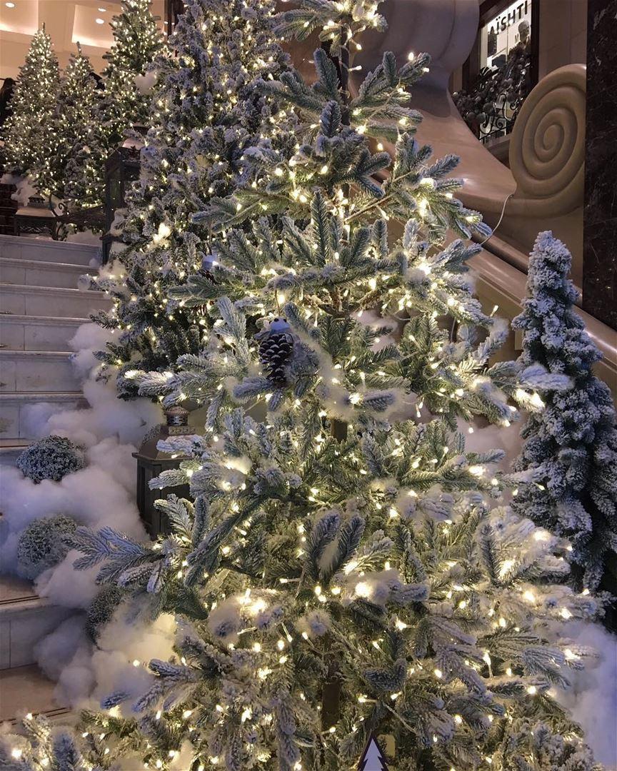 8347f2452abd8 Essa é a época mais maravilhosa do ano, não acham  Hotel Phoenicia ...