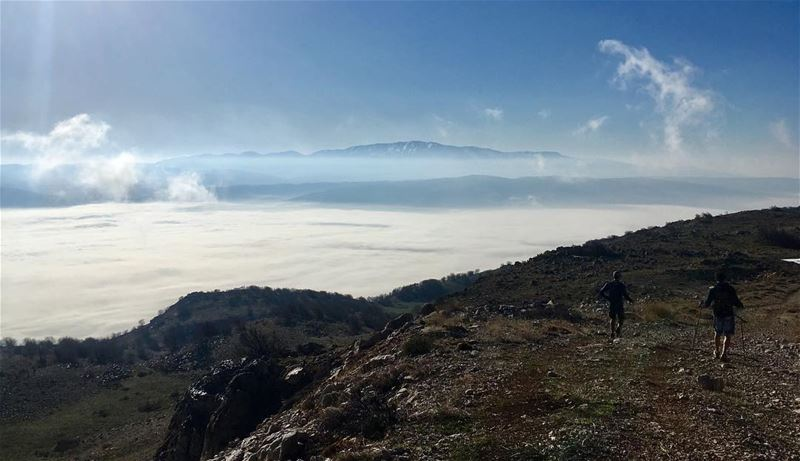 Morning 25km trail run in the Ain Zhalta Cedars reserve with an epic view... (Chouf)