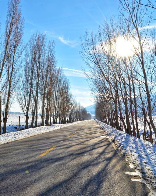 Winter times...❄️❄️ Bekaa Lebanon.  livelovebekaa Hope we had a white... (West Bekaa)
