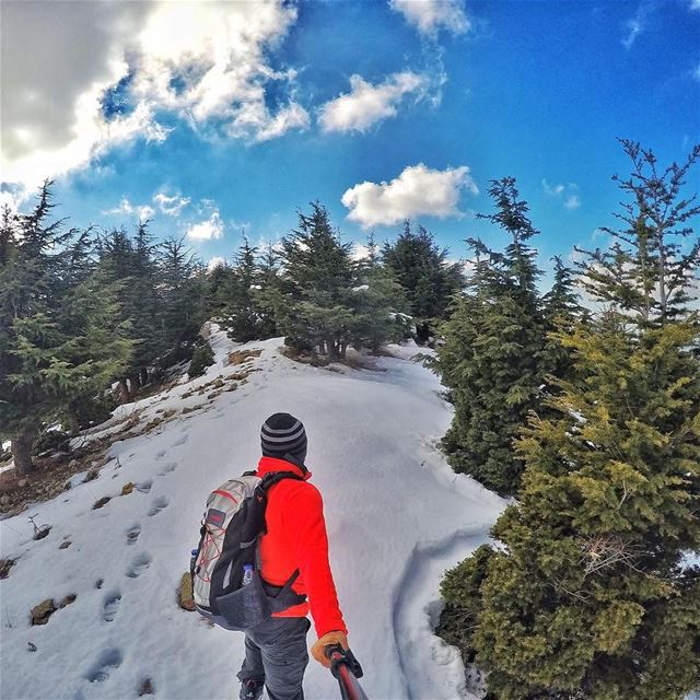 snowshoeing  hiking  hikinglife  hiking4fun  hikinggear  hikingtime ...