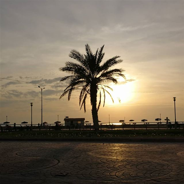 sunset from  tartous  syria with love by  hlotfyIg_lebanon ...